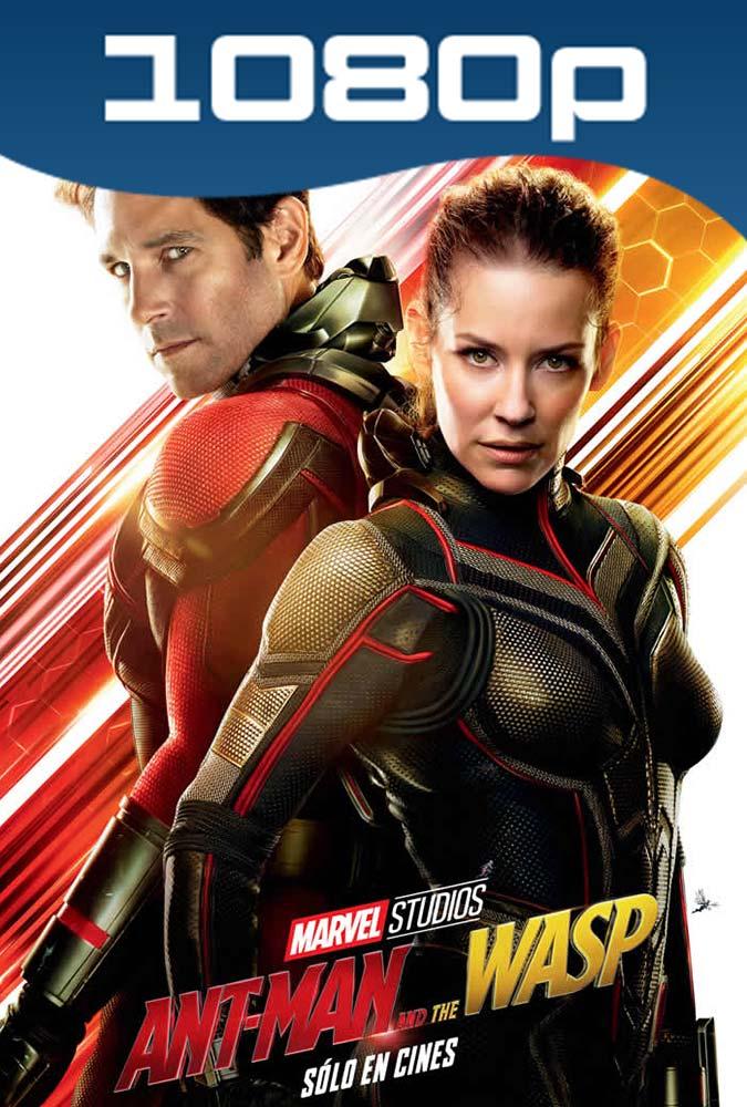 Ant-Man and The Wasp (2018) HD 1080p Latino