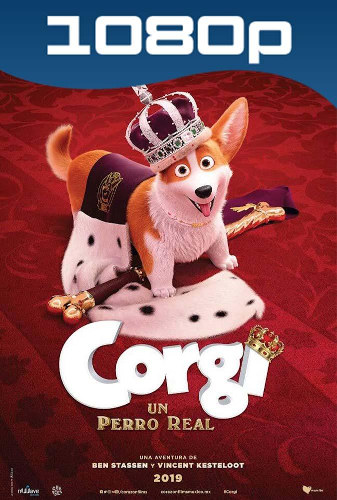 Corgi Un Perro Real (2019) HD 1080p Latino