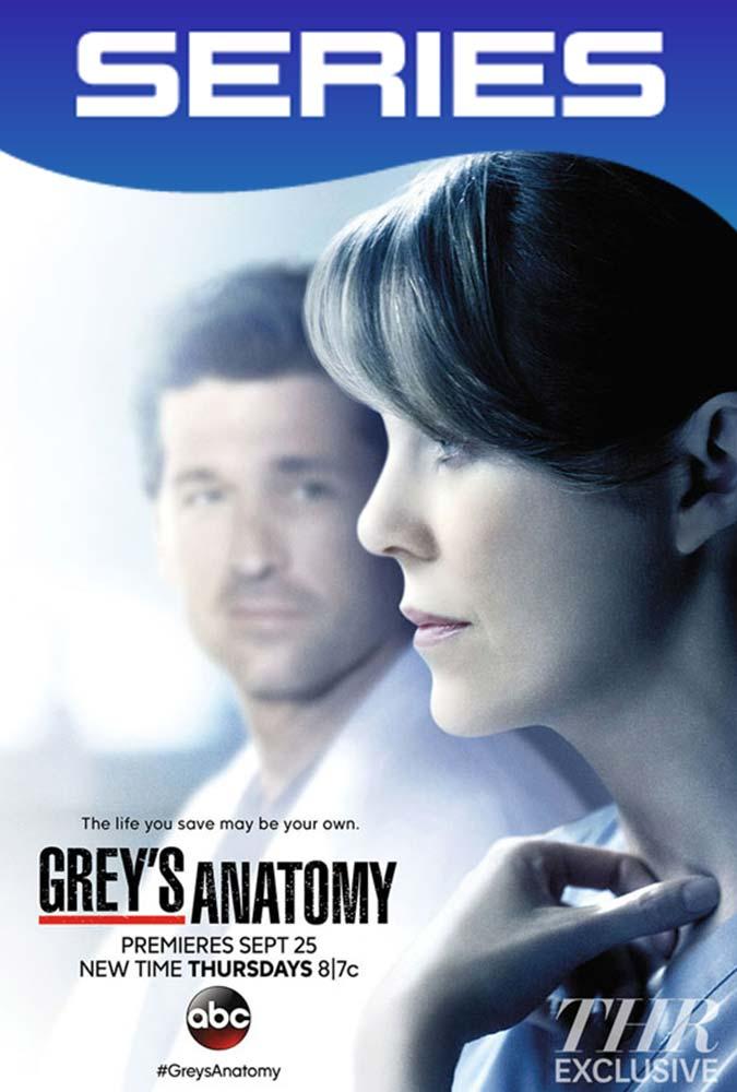 Grey's Anatomy Temporada 11 Completa HD 1080p Latino