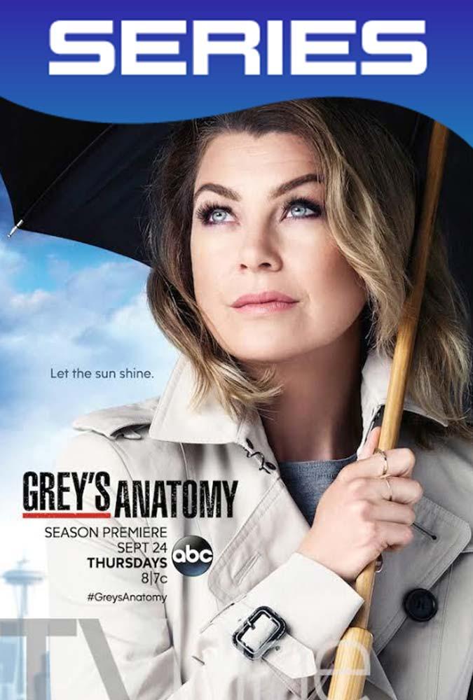 Grey's Anatomy Temporada 12 Completa HD 1080p Latino