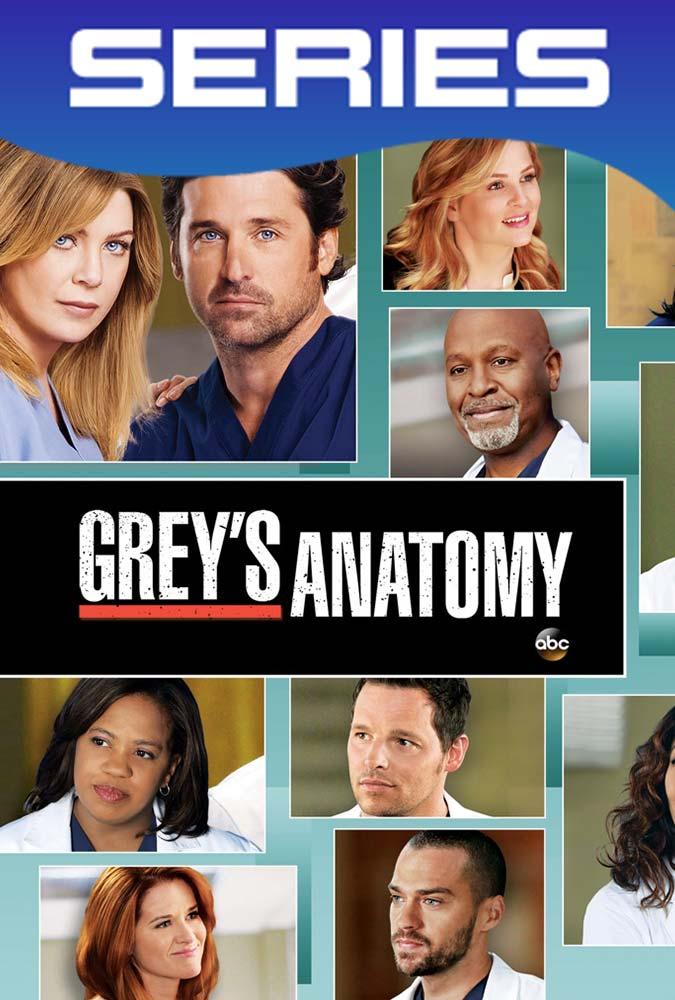 Grey's Anatomy Temporada 9 Completa HD 1080p Latino