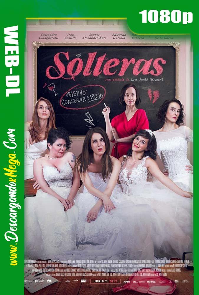 Solteras (2019) HD 1080p Español Latino
